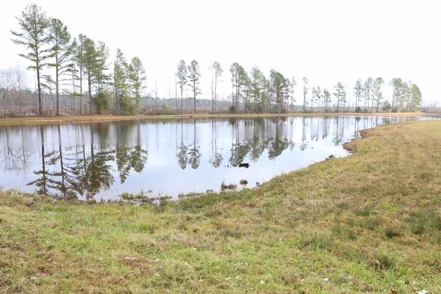 Skipper Lake Tract – See Video!